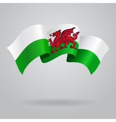 Welsh waving Flag vector image vector image