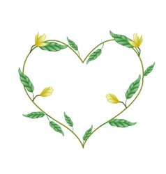 Yellow magnolia blossoms in a heart shape vector