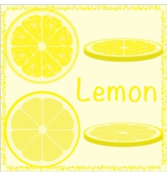 Citrus slices vector
