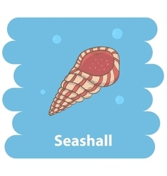 Seashell cartoon vector