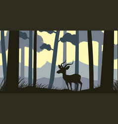 Background scene with silhouette gazelle in forest vector