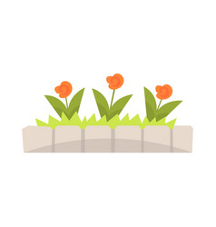 orange flowers in flowerbed with stone border vector image
