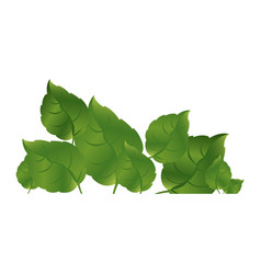 Green leaves together icon vector