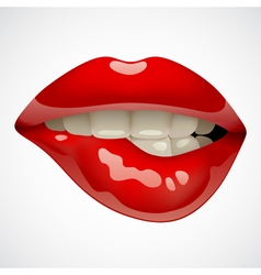 Red lips vector image vector image