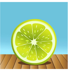 summer lime fruit vector image