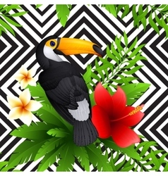 Tropical pattern with toucan and hibiscus vector