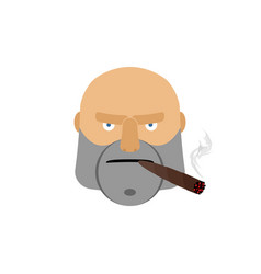 Angry man with cigar aggressive male face isolated vector
