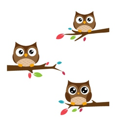 Family of owls sat on a tree branch vector image