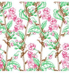 apple tree sketch design vector image vector image