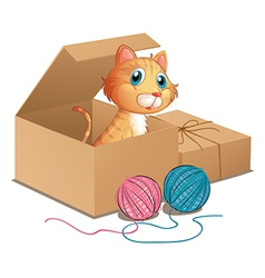 A cat inside the box vector image