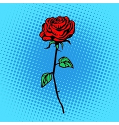 Flower red rose stem with thorns vector image