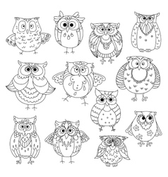 Funny owls and young owlets sketch symbols vector image