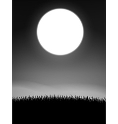 Midnight on meadow vector image vector image