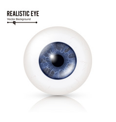 Realistic human eyeball 3d glossy photorealistic vector