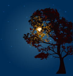 Autumn tree on a background lunar night and the vector