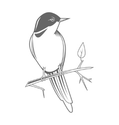 Engraving bird nightingale emblem vector
