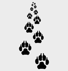Trail of dogs 3 vector