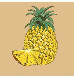 Pineapple in vintage style Colored vector image