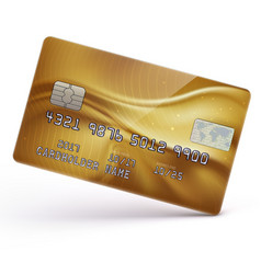 gold credit card vector image vector image
