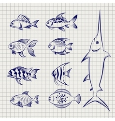 Hand drawn sketch fish vector