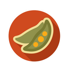 pea flat icon vegetable vector image
