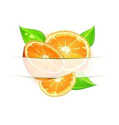citrus background vector image