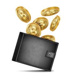 bitcoin wallet black color success vector image