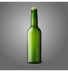 Blank green realistic beer bottle isolated on grey vector