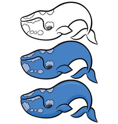 hand drawn whale vector image vector image