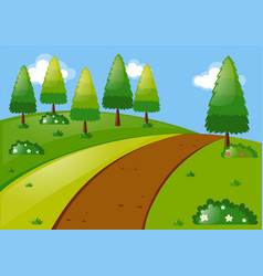 nature scene with pine trees in park vector image
