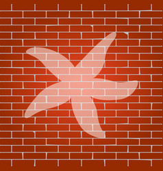 sea star sign whitish icon on brick wall vector image vector image