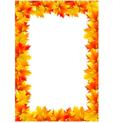 Frame of yellow autumn maple leaves vector