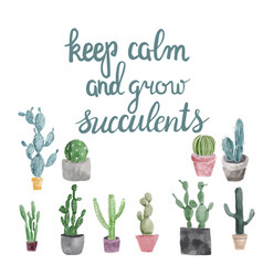 Succulents and calligraphy quote keep calm and vector