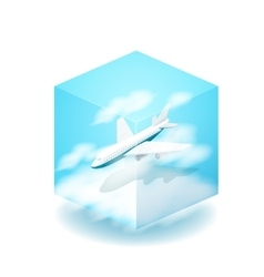 The cube the plane flies in the vector