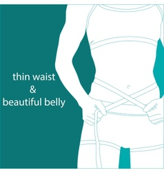 thin waist and beautiful belly vector image vector image