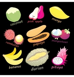 Graphic color set of exotic fruits vector