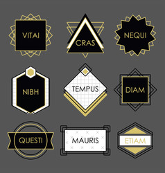 cute black geometrical vintage emblems on gray vector image vector image
