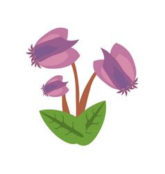 Purple flower image icon vector