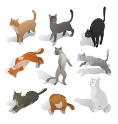Set of isometric cartoon cats in different poses vector