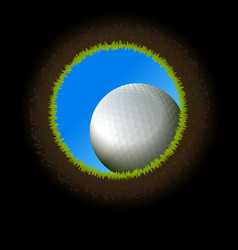Golf Ball Hole vector image