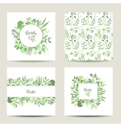 Set of four herbal card templates vector