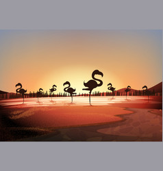 Silhouette scene with flamingos standing in lake vector