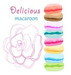 delicious macaroon vector image