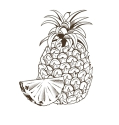 Pineapple in vintage style Line art vector image vector image