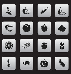 set of 16 editable kitchenware icons includes vector image vector image