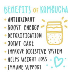 Health benefits of kombucha vector