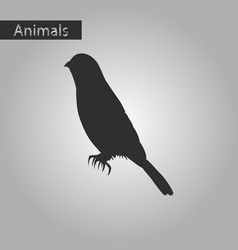 Black and white style icon of sparrow vector