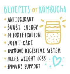 health benefits of kombucha vector image vector image