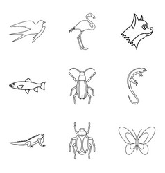 moth icons set outline style vector image vector image