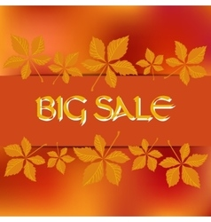 Stock card template for autumn sale vector
